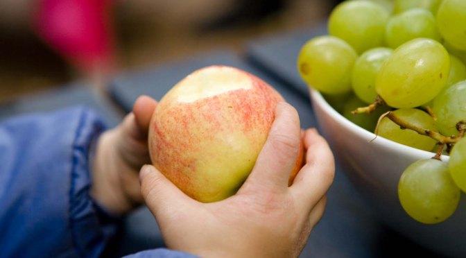 Erntedankfest – Die Gelegenheit Lebensmittel neu zu  entdecken und wertzuschätzen.
